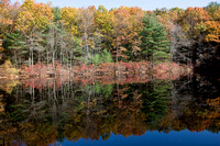 Walden Pond